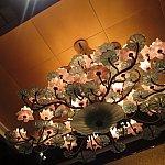 夜もこれまたいい雰囲気です。妖艶なロータス。
