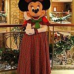 クリスマスのミニーちゃんも可愛いです💕