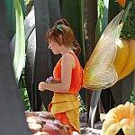 別の時間帯に覗いたら別の妖精がいました。
