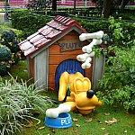 プルートは自分の小屋でお昼寝中。骨の夢を見ているみたい?!