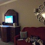 こちらもお部屋です。テレビ台の左右にも椅子やソファがあるので,荷物整理に嬉しい広さでした。