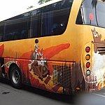 シャトルバスはグリズリー・ガルチ、ミスティック・ポイント、トイストーリーランドのラッピングバスが走っています。たまーに何も絵が描かれていないバスもありました。