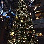 クリスマス前に滞在しましたので、巨大なツリーがロビーにありました!ここは宿泊者以外でも入れると思います。