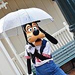 雨の日は傘をさして登場!キャラがさしてるのはレアですねー\(^o^)/