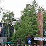 惑星エンドアの巨木が再現されています。