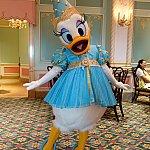 デイジー!この衣装はフロリダのハロウィーン・パーティーで登場しているらしいです。