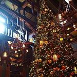 天井まで届く程の立派なクリスマスツリー!