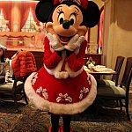 こちらも、クリスマスコスチュームのミニーちゃん。同じくパークで会えます。