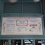 おすすめはニューオーリンズ・ミント・ジュレップという爽やかドリンクとミッキー・ベニエです!