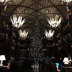 クリスマスツリーがありました(^o^)