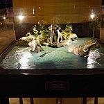 ジャングルクルーズの象の水浴びのシーン