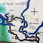 ゴリラバレーと言うそうです。地図は結構詳細です。