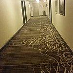 廊下ですwふわふわしてますよ!