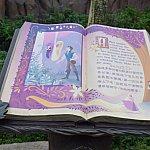 ラプンツェルのストーリーを見ることができます。