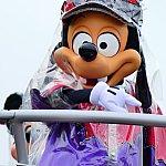 ここからは雨の日の写真を☔️✨雨の日はご挨拶のみですがそれでも嬉しい〜♪