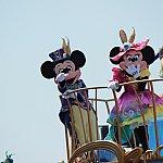 ミッキー&ミニー♡少し遠目ですが、しっかりこちらを何度も向いてくれます!