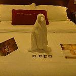 次の日はペンギン!白雪姫の小人のチョコレートも毎日おいてくれてました!