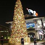 ディズニータウンのクリスマスツリー☆こんな感じで時々演奏していました!