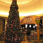 クリスマスシーズンに泊まった時はツリーが飾られていました