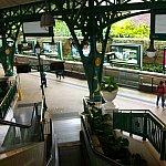 ディズニーランド駅ホーム