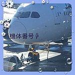 ちょっと困難な先に待っていてくれたのは私の飛行機ボーイング787-8  世界で1機しかいない機体でした💕超感動しました嬉しい😂