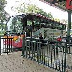 ディズニーホテル循環シャトルバス