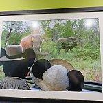 アドベンチャー・アウトポストに飾られている写真3