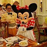 食べ物だけ残された無人の席。食べ物を見つめたり、席の人がいないかキョロキョロしたり、かわいいミニーちゃんに会えました❤