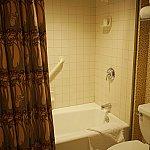 どんなに高いホテルでもお風呂はユニット…。