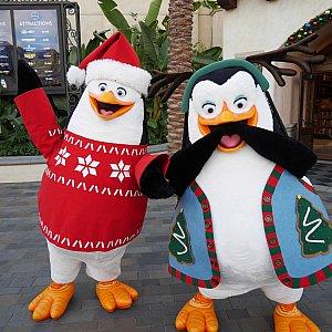 ペンギンズ!まさかクリスマス衣装とは思わず😍こんなにかわいいのに誰も並んでませんでした……