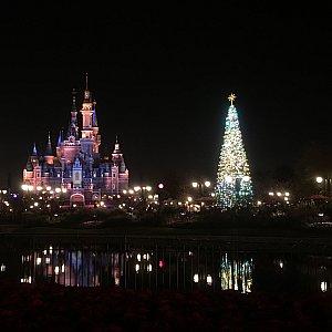 夜ツリーと城