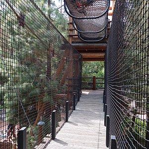 2重構造のつり橋