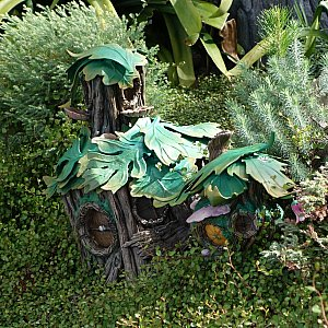キューラインにあった池のそばを良く観察してみると、妖精たちのお家をたくさん発見しました。