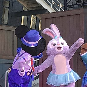 ステラ・ルーとミッキーのダンスは必見✔️