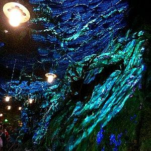 バイオルミネーセントの洞窟に入って来ました。