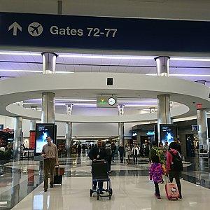 ターミナルの様子。