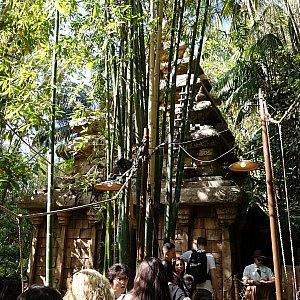 インドの古代神殿へ向かいます