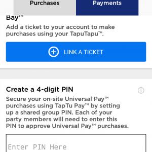 チケットの登録が済んだら、最後に4桁の暗証番号を設定します。タプタプでお支払いをする際に、この暗証番号が必要になります。クレジットカードと違う暗証番号でも大丈夫です。