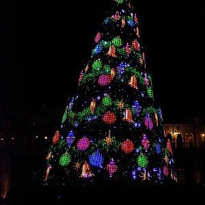 クリスマスツリーはショー終了後もご覧いただけます。