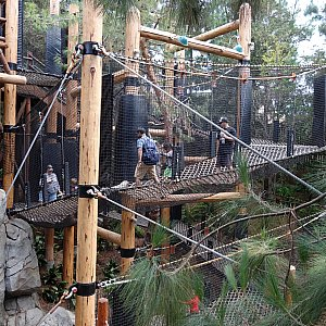 かなり複雑な構造のジャングルジムです