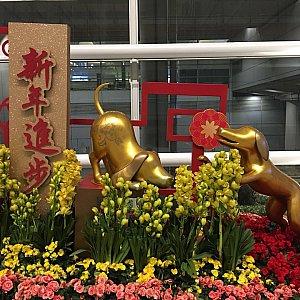 空港内にも春節の飾り付けがあります。