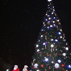 タウンスクエアの大きなクリスマスツリーの前で行われます