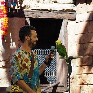 鳥が歌を歌うシーンもあります。