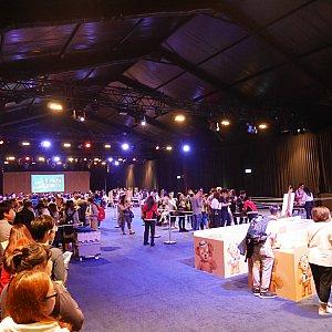 会場はすっごく広い!左のかなり長い列は限定ピン購入の列。奥には上海ディズニーのブースがあったり、ピントレーディングをする人たちが行商のようにピンを並べてます。